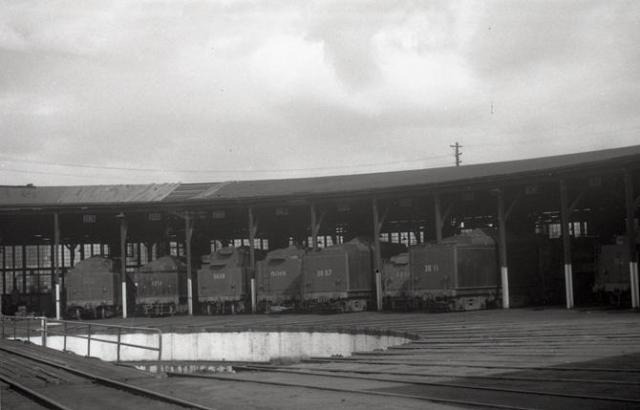 goulburn loco depot steam engines 52, 32, 36, 59, 38, 50 class