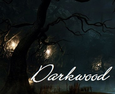 Steam Community    Guide    Darkwood   Beginner Tips for the     Steam Community    Guide    Darkwood   Beginner Tips for the Curiously  Daring