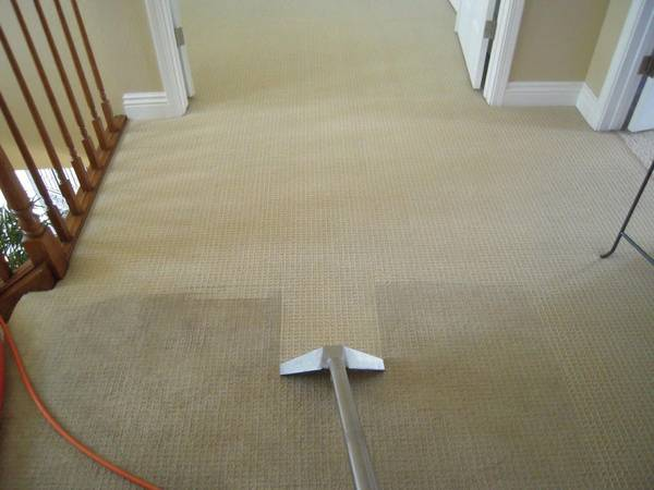 carpet cleaning by steam xpress