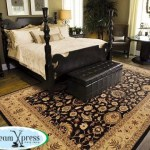area rug cleaners