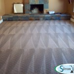 reno carpet cleaners