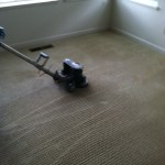 Roto vac steam carpet cleaning