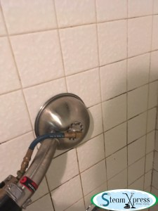 steam grout cleaning