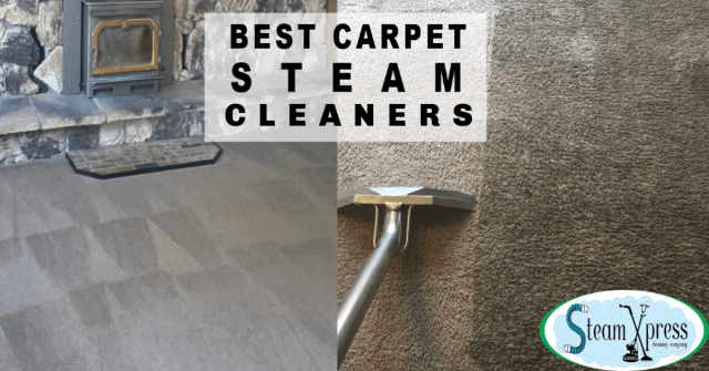 best carpet steam cleaners reno