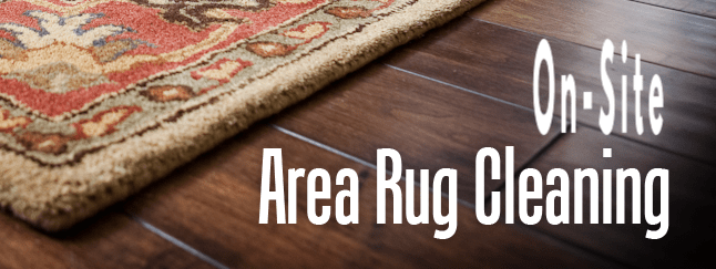 best area rug cleaners