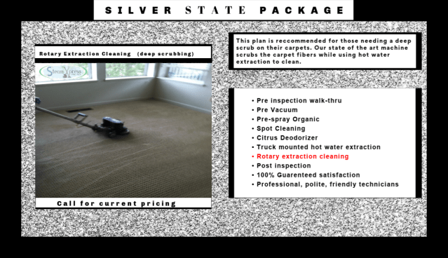 carpet cleaners carson city