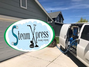 best steam cleaners steam xpress
