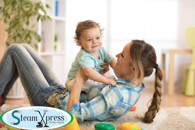 best carpet cleaners carson city