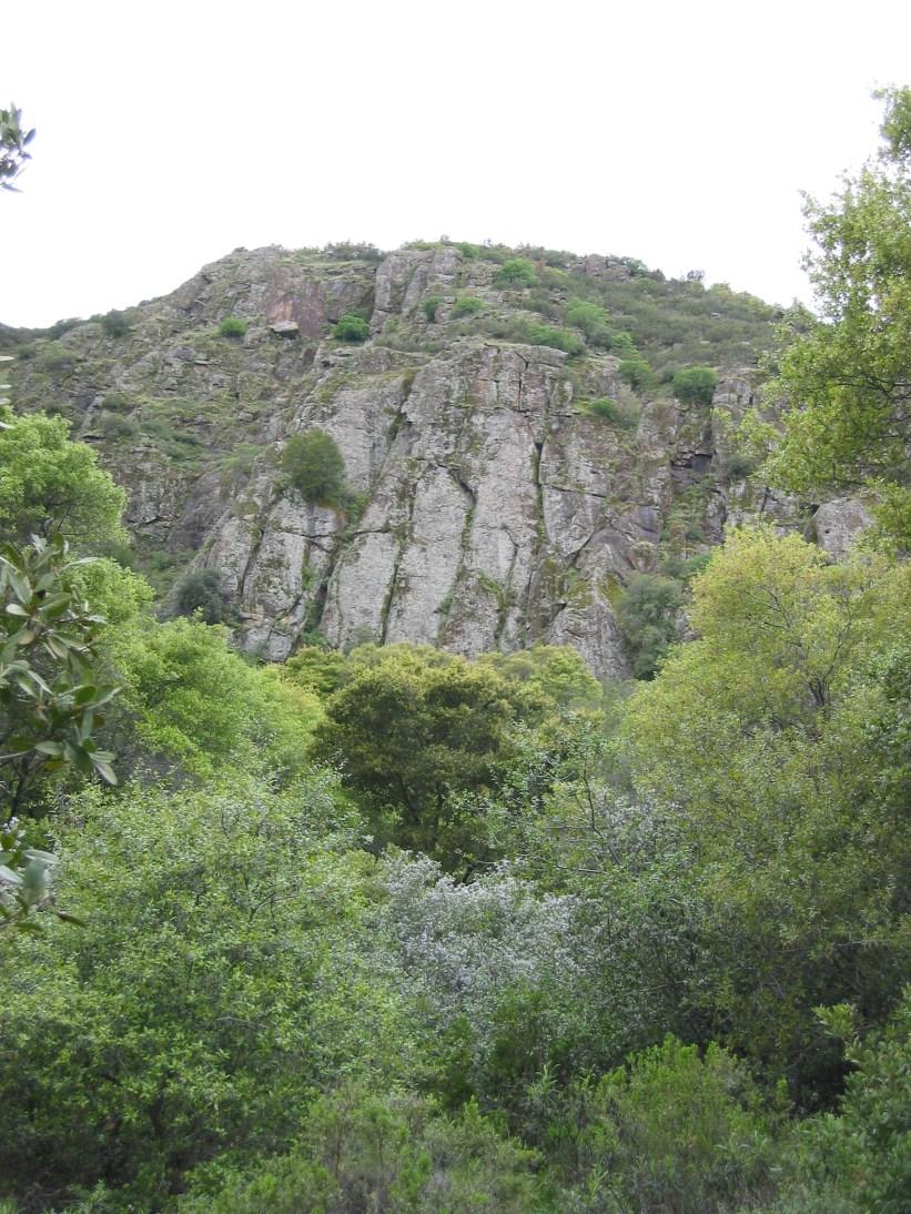 Blue Ridge cliff.