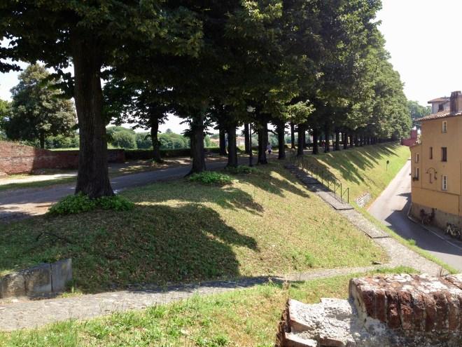 Le mura di Lucca, bymuren, Lucca, Toscana, Italien