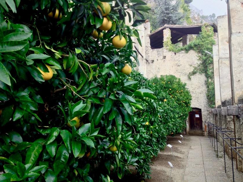 Limonaia del Castel, Limone sul Garda, Italien.