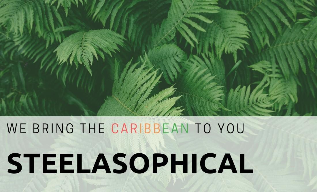 Steelasophical Caribbean Steelband Music 00 (11)