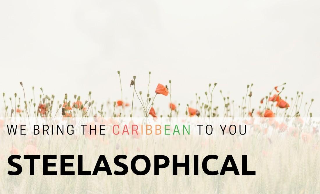 Steelasophical Caribbean Steel Drums wedding day music