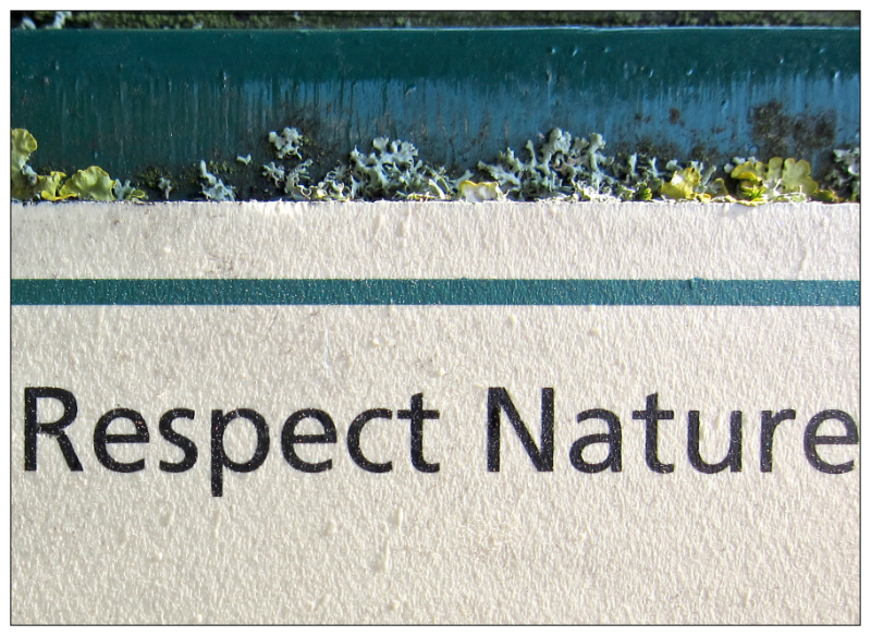 Respect Nature. Sheffield S11