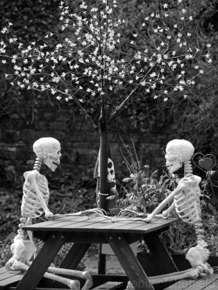 Skeletons 1 - Little Bits of Sheffield