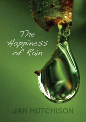 The Happiness of Rain cover