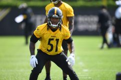 Pittsburgh Steelers linebacker Buddy Johnson (51) participates in the Organized Team Activities (OTAs), Tuesday May 25, 2021 at the UPMC Rooney Sports Complex. (Karl Roser / Pittsburgh Steelers)