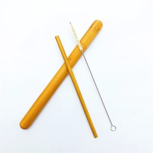 Natural Bamboo Straw Set