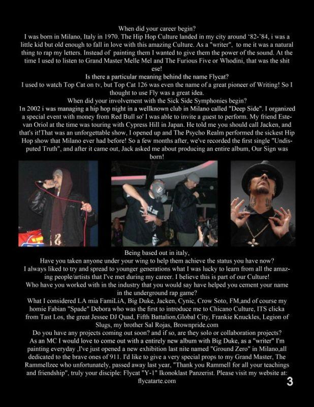 page 3 flycat 2
