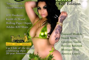 Steelo Magazine 420 Issue – Printed Copies on sale now