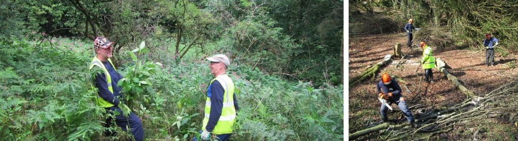 Environmental Project Officer job
