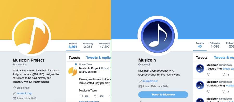 musicoin_accounts.png