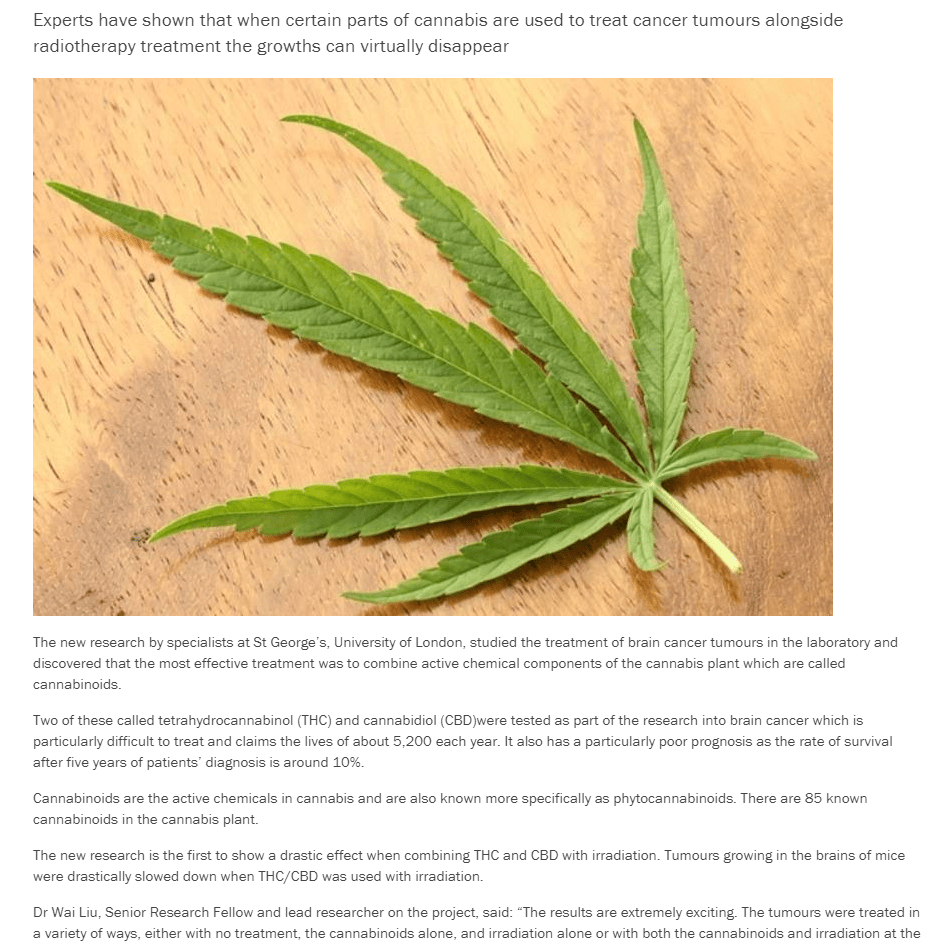 , The importance of scientific communication in the cannabis legalisation movement