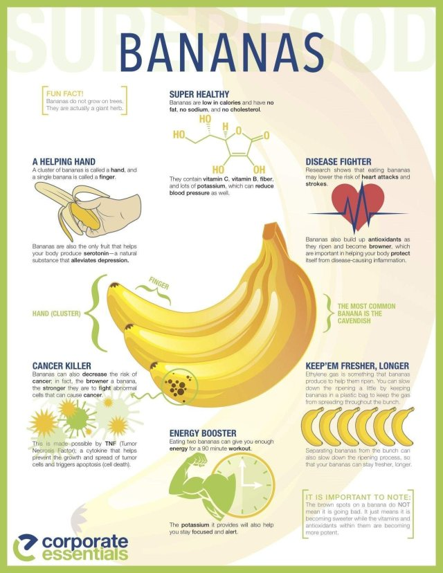 Food Facts and Hacks #5: Bananas by Being A Wordsmith