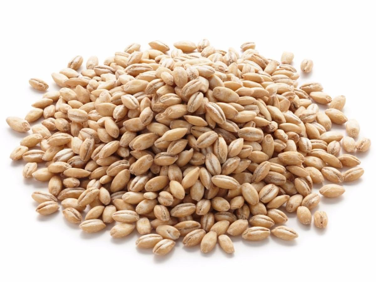Wheat has lots of nutrients-Have them without fail in your meals.