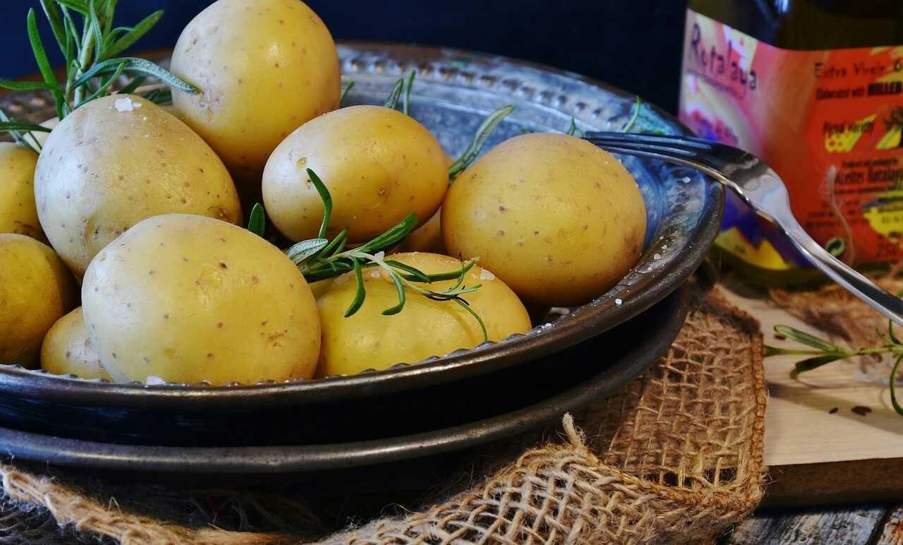 Potatoes Protect Brain-Telugu Food And Diet News