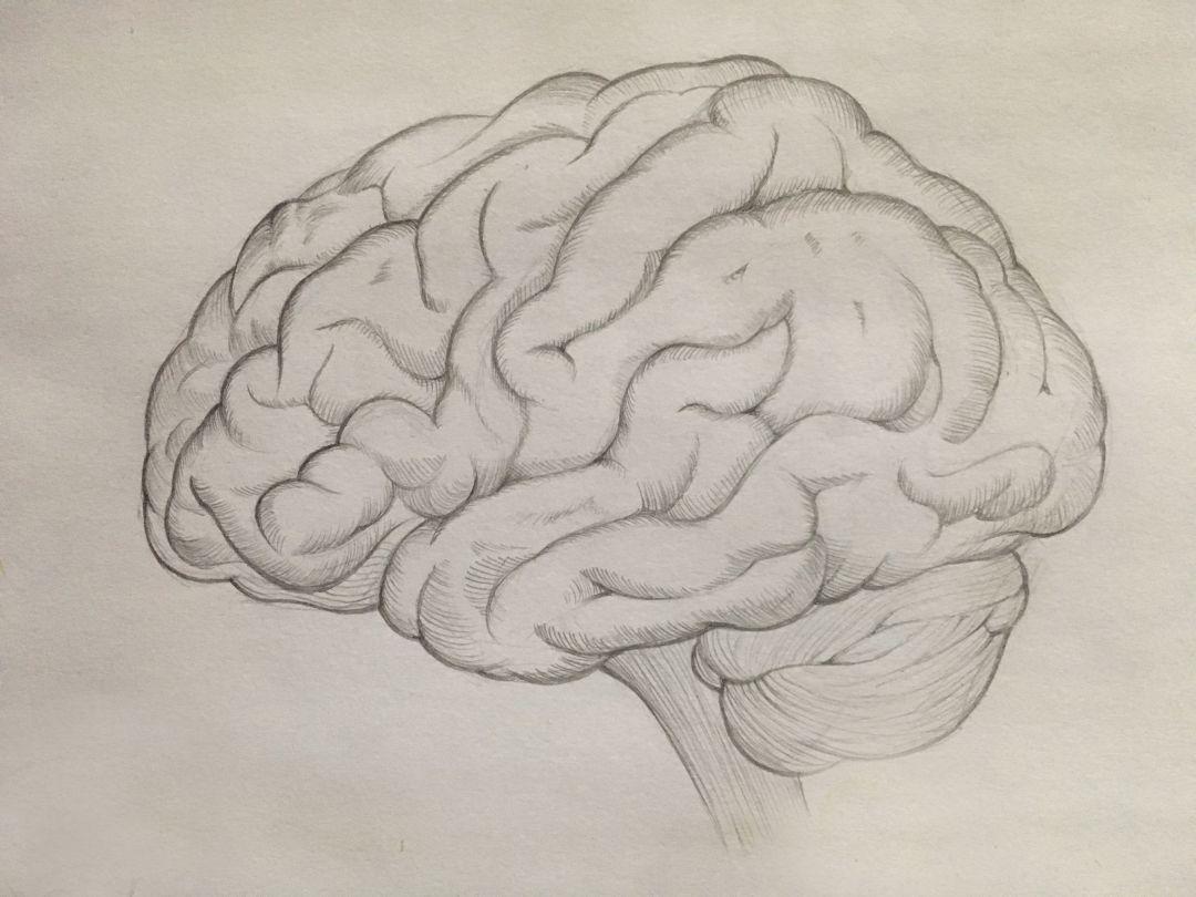 Eloh_Projects_Brain_01.09.2018.jpg