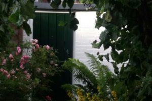 henk-fotos-tot-en-met-7-mei-2017-1016-e1494321042320