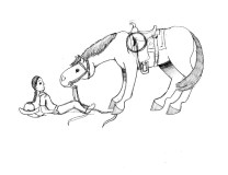 andevenmore horses
