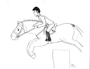 stillmore horses