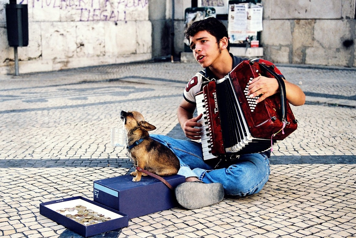 Street performer with an accordion and tiny dog, Lisbon
