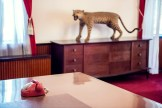 Red phone, wooden cabinet and stuffed cheetah