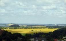 Landscape (Rügen), 2013