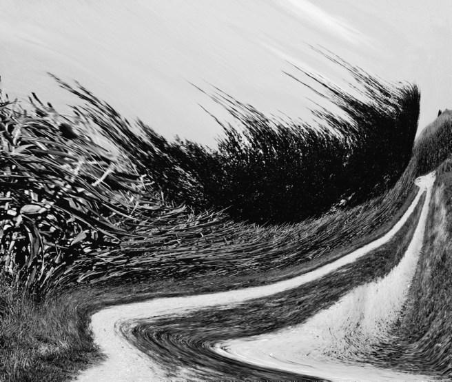 Meaningless landscape (warped), 2015