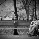 New York (2008)