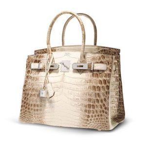 Hermès Himalayan crocodile Birkin bag listed on 1stdibs.com