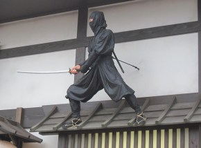 Small Eiga Mura Ninja Roof 2012