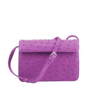 Purple lexy