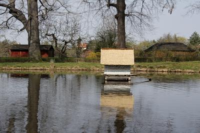 Teich am Englischen Pavillon, Schloßpark Pillnitz