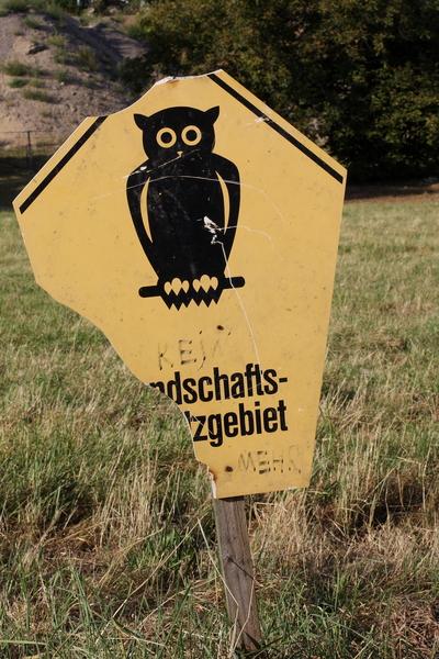Schild an der Baustelle der Waldschlößchenbrücke.