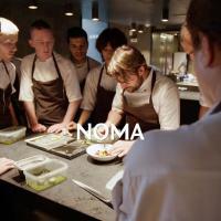NOMA - Eine Dokumentation