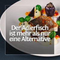 Der unterbewertete Adlerfisch - Ein Rezept