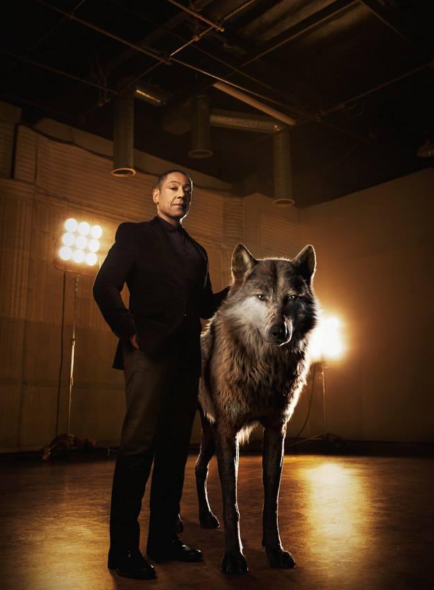 mogli o menino lobo 20164