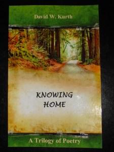 David's Book cover