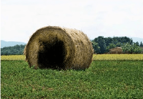 Hollowed-out haystack