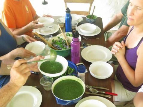 Nettle soup (including: nettle, violet leaves,mallow)